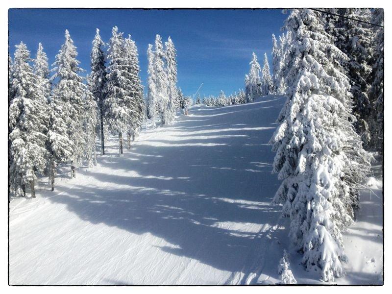 winter-border-05