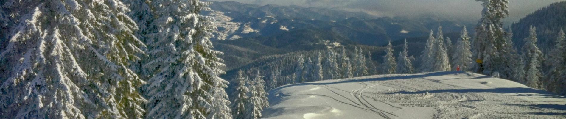 SnowScene1
